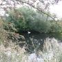 clean fresh nature