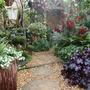 My_garden_2010_069