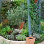 Herb garden finished at last......