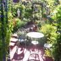 grey lady in garden