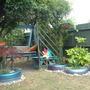 My Tyre Garden July 2010