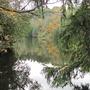 Belfountain Conservation Area, Ontario