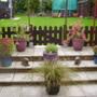 changed my garden around ready for winter.