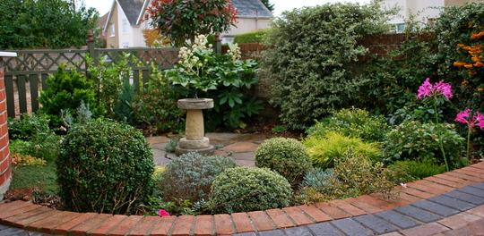 Front garden today......