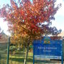 Autumn colours at Spring Common school 2010 10 22 001