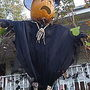 Scarecrow_027_opt_opt
