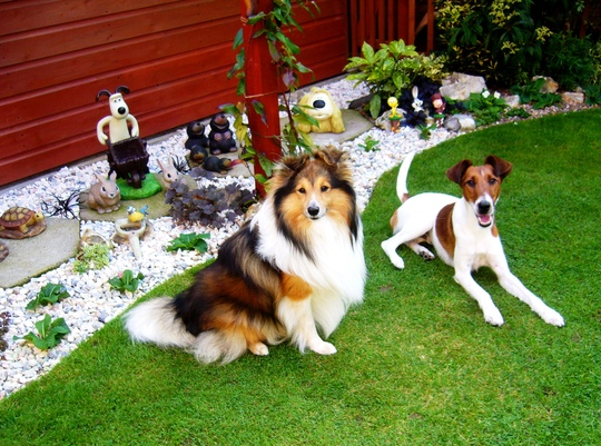 Gromit and friends in the Gravel Gardens.