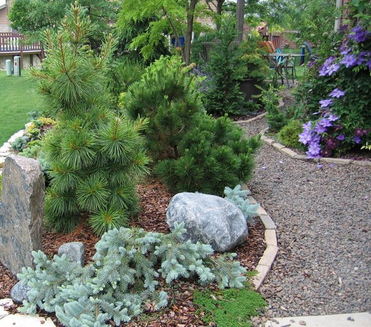 South side garden