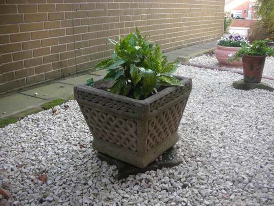 Last but not least of my Freebie Planters