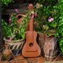 Guitar & Pots