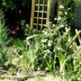 View of another corner of the garden at bottom of path.