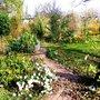Garden path in November
