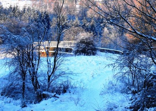 Towards the railway bridge, December2009