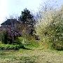 Lower garden view