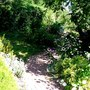 August view down the garden path