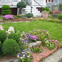 My neighbor's rock garden in spring