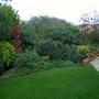 Side garden view November 2010