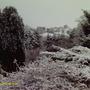 Snow_004