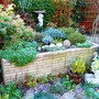 Back garden raised bed ... November 26th ...
