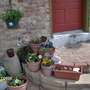pots on the patio
