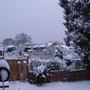 Snow scene (29)