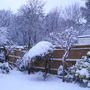 Snow Scene (30)