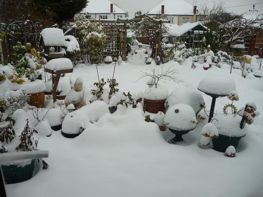 Snow in Nov & Dec