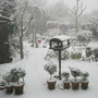 Snow_2_001