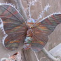 Butterfly ornament decorated by freezing fog