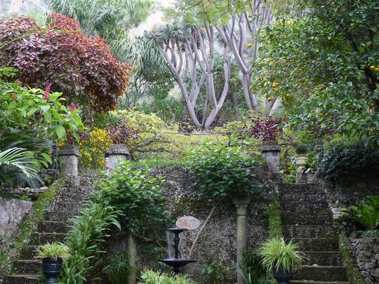Botanical Garden Gibraltar 1
