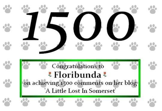 Congrats to you, Flori!