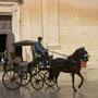Horse & Buggy in Mdina - for Shirleytulip