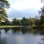 Arboretum_bedale._oct_30th_017
