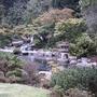Restful Japanese garden...