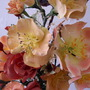 Close up of some dog roses