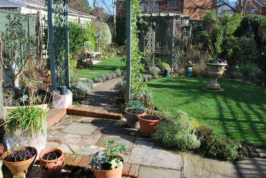 Garden in the sunshine today.
