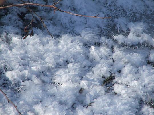 Winter 16 02 2011