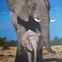My Painted Elephant