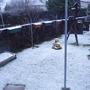 snow today
