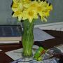 Daffodils_in_vase