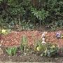 Helpers in our garden...