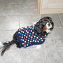 Sophie's new coat.