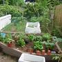 The garden is alive!