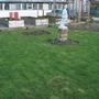 this years first cut of lawn in allotment