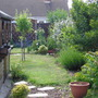 The old garden again