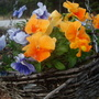 March_14_038