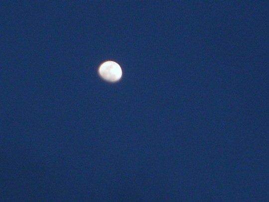 Moon early evening March 16 2011