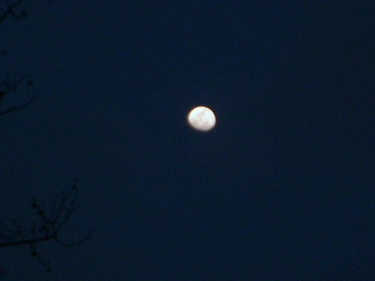 Moon in full darkness, March 16 2011