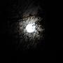 Full moon 19/3/11