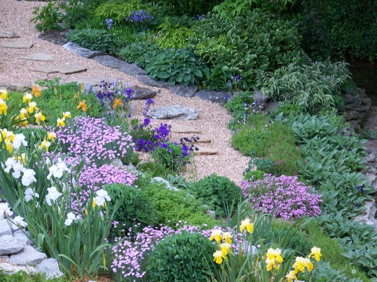 Backyard terraced garden in early May